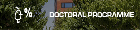 Link to Doctoral Programme